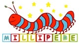 Millipede Kindergarten